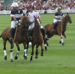 Cowdray Polo